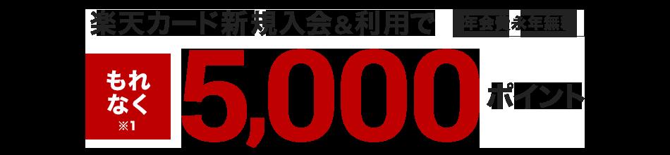 楽天カード新規入会&利用でポイントプレゼント!