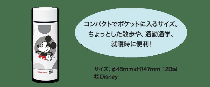 ディズニー・デザイン限定ステンレスボトル