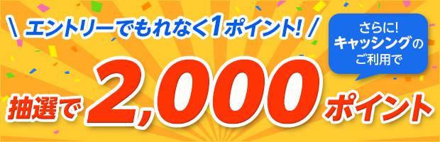 キャッシングご利用でもれなく100ポイント、さらに抽選で2,000ポイントプレゼント!
