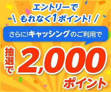 キャッシングご利用で抽選最大2,001ポイントプレゼント!
