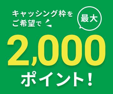 キャッシング枠をご希望で最大2,000ポイント!