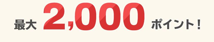最大2,000ポイント進呈