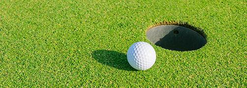 ゴルファープラン