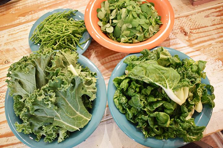 野菜4種 ケール、シーアスパラガス、ベビーバクチョイ、モリンガリーフ