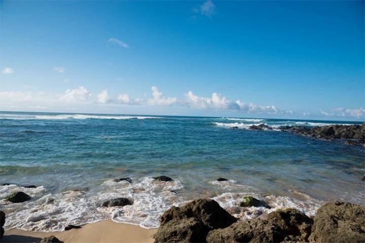 オアフ島 ラニアケアビーチ